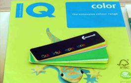 Старт проекта IQ Color Folio
